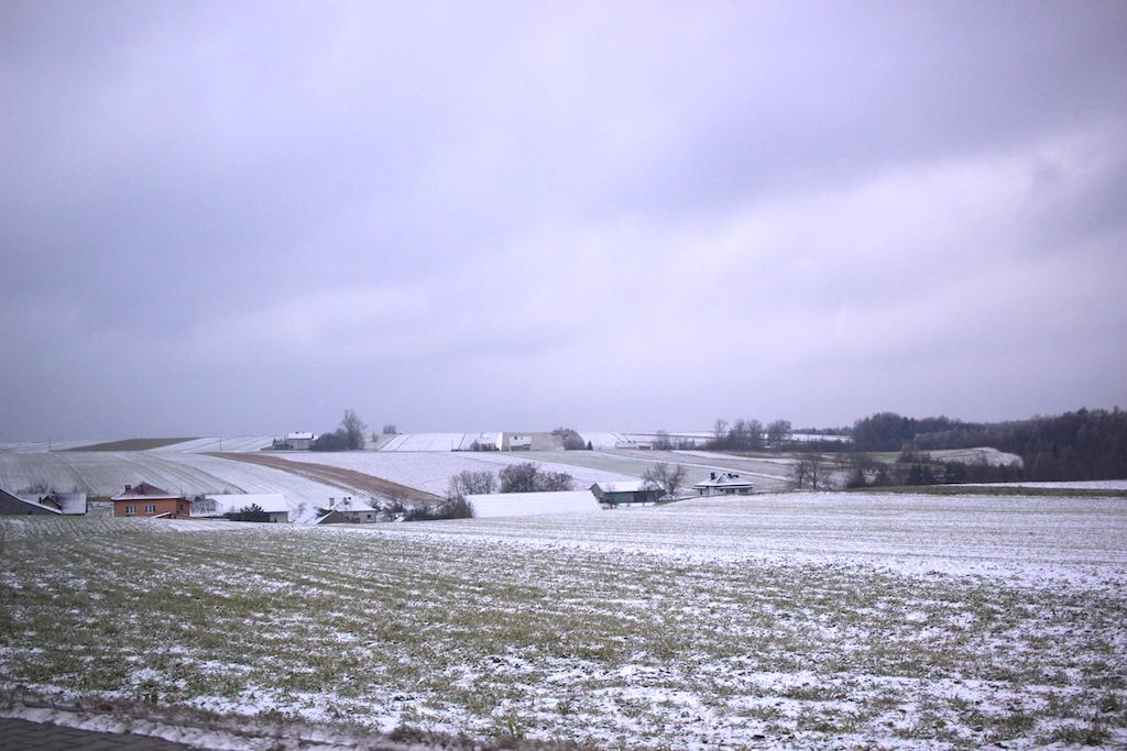 ヨーロッパ出張2018マザーグース農場