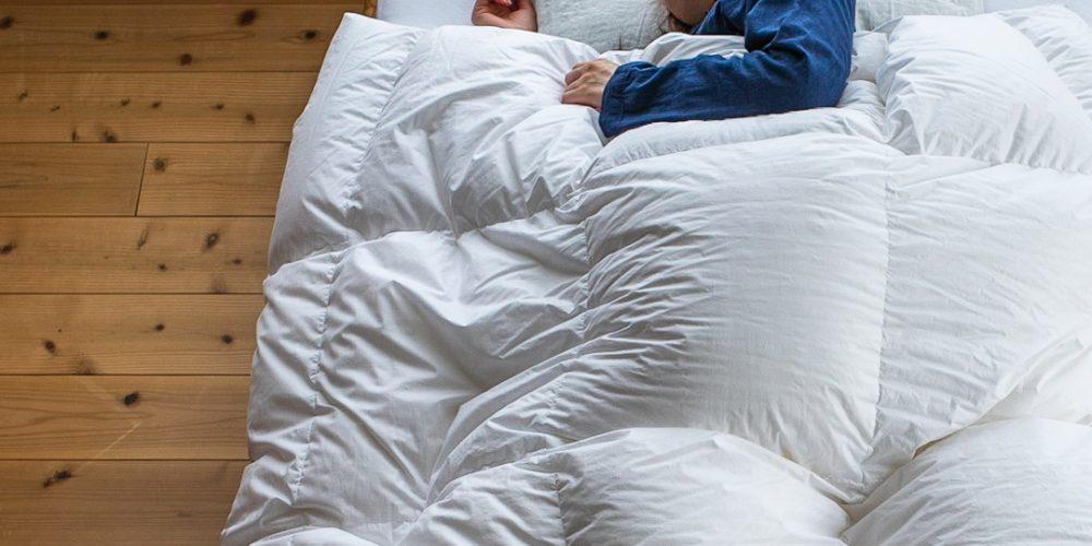 イメージ資料羽毛布団バナー